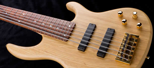 Bass Professor 3/2011 - Test Magnus