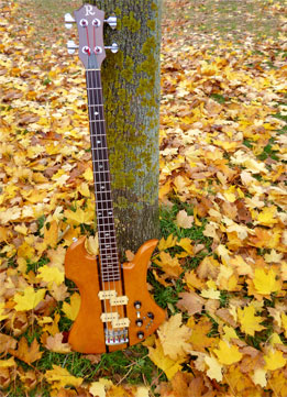Bass professor 1/2014, BassMuseum BC Rich Mockingbird Bass 1976